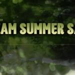 steam_summer_sale